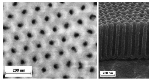 Example of nanostructured surface relief obtained in the laboratory and characterized by electron microscopy: alumina nanotube layers.