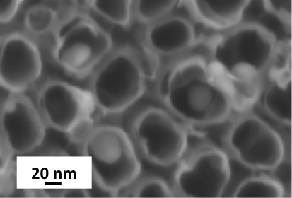 Example of a nanostructured surface relief of a nanoelectrode obtained in the laboratory and characterized by electron microscopy: gold nanoparticles inserted into titanium dioxide nanotube layers.